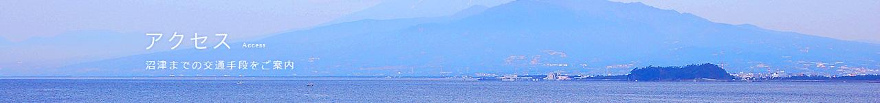 三津・大瀬崎までの交通手段